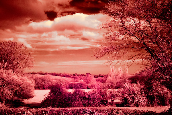 Infra Red Experiments
