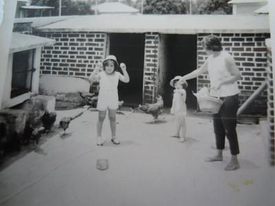 Andrada quintal com xicucos Hortense Beato e as filhas Teresa Beato e Ruth