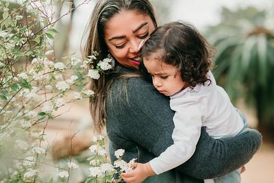 Family Love - Sofia Chaves