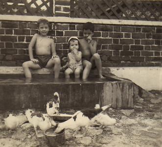 Chico Figueiredo, Palmira Figueiredo, Álvaro Figueiredo  64-Andrada - No quintal, tanque dos patos... refrescando