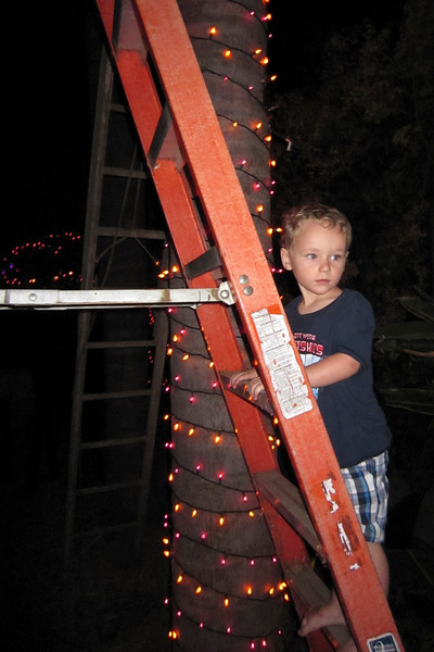 Tannon helping with the palm tree spirals (Pumpkin Carving Party Prep)