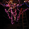 Blurry bat magnolia (Light rigging at KPP)