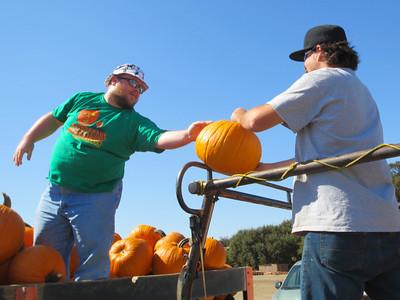 2013-Fall-Pumpkin Acquisition