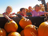 We loaded these pumpkins all by ourselves! (2013 KPP Pumpkin Acquisition)