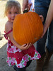 Some pumpkins require more help than others, of course... (2013 KPP Pumpkin Acquisition)