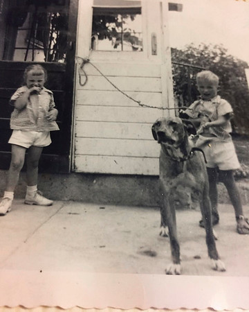 """Kristi & Eric Jacobsen with Babydoll, their Great Dane (~1955; photo/scan fromn Kristi 10/19/2016) Kristi: """"Don't think I liked our Great Dane baby doll!?!?"""" [Master in scan archive]"""