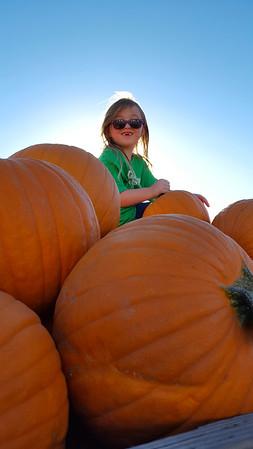 Q4 10-01 KPP Pumpkin Acquisition