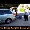 Tiniest Pumpkin Conga Line