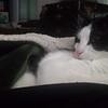 My snugglebug