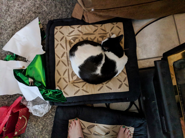 Babycat napping in the middle of the chaos (Opening Presents--Christmas Day)