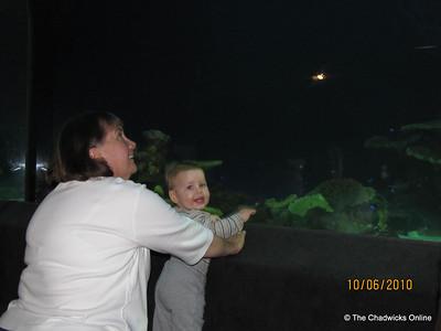 Vancouver Aquarium October 2010