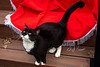 Goochland Pet lovers by Sigafoos-6288