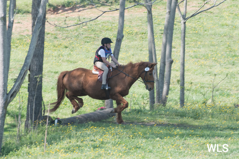 DRHC PONY CLUB TRIALS 4-15-17-1190