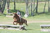 DRHC PONY CLUB TRIALS 4-15-17-1198