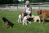 Smyth Pups June 2013-0876