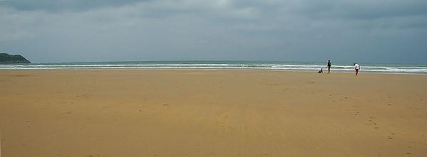 Toda la playa para ellos ¿hay algo mejor?
