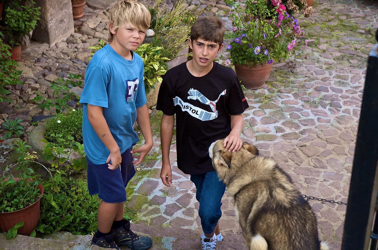 Jugando con otro perro, el pasatiempo del verano.
