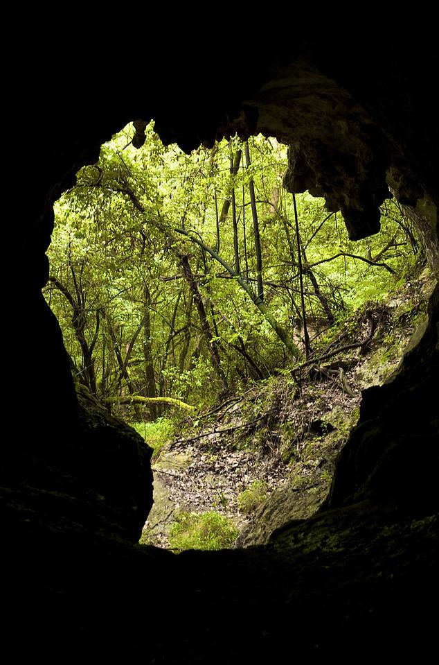Entrada a la cueva, mucho más no pudimos pasar.