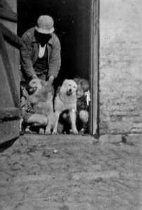 Jens Renberg Hansen med hunde og Rie.