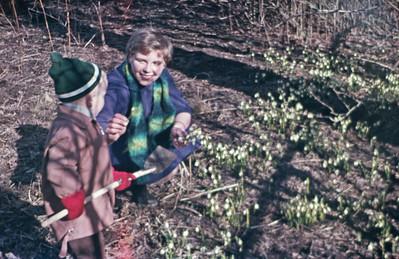 Lise og Morten plukker vintergækker.