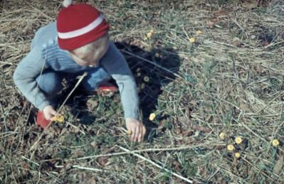 Morten botaniserer.