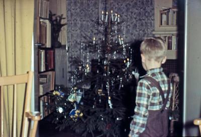 Morten beundrer juletræet.
