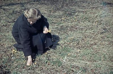 Lone plukker anemoner.