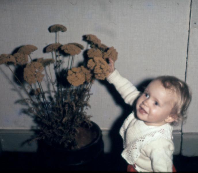 Blomsterpigen. Mette Renberg
