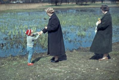 Morten, Lone og Grethe fodrer ænder.