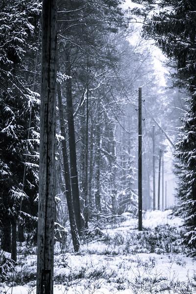 Herretur til Sverige Januar 2014