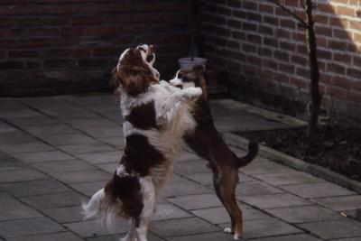 Rusty en Keffie 1980