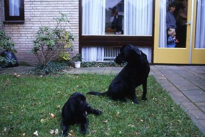 Kasper (klein) en Doerak 1984