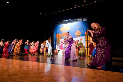 Performance of Aladdin