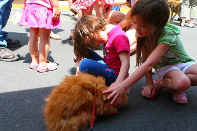 Pet Fiesta Festival
