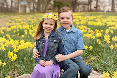 2018 Daffodil Mini- Rainey