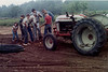 801 Ford Tractor laying water line-1967; Faith, Roger, Billy, Tommy, Wayne, Michael and Virgil Barber (Courtesy of Faith Noles)