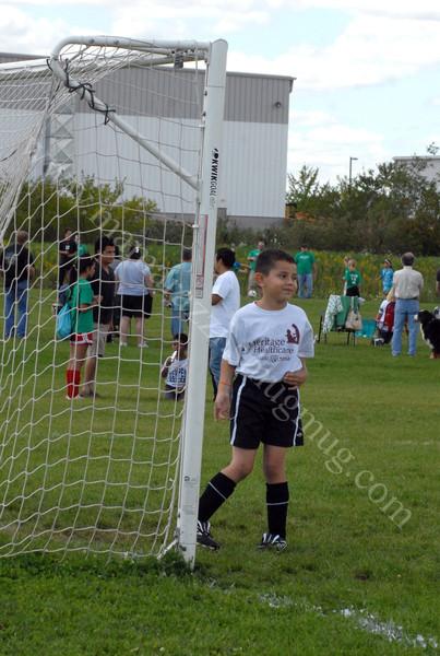 Goalie 2012