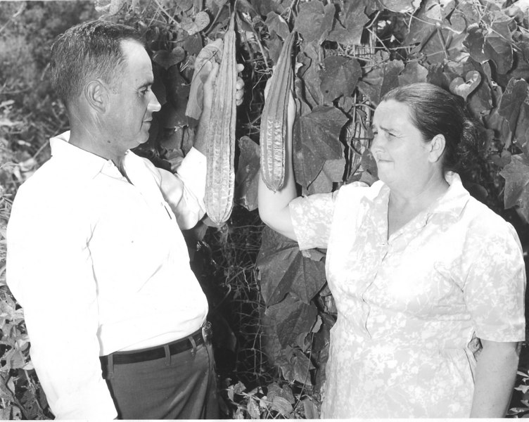 Harvey Joiner and wife