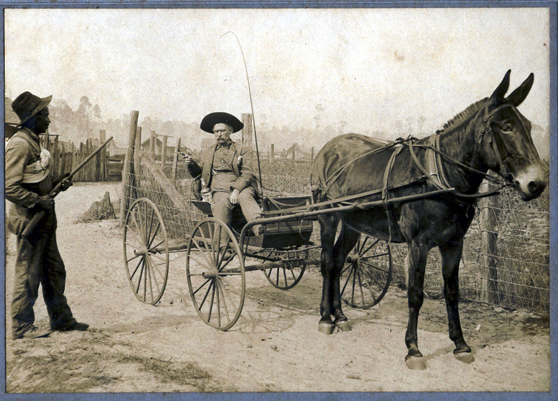 Dan McGee in buggy. He was married to America Strickland and lived near Ray City on Rays Mill Pond. Black unidentified. c. 1900 Photograph is probably a posed and set up shot. Verification and photo credit needed.