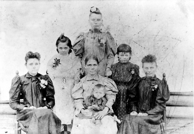 Patten women left to right seated: Jennie Patten Register, Eliza Watson Patten (great grandmother) Faye Patten Mathis (baby) Della Matilda Patten Corbitt<br /> 2nd row standing left to right: Mollie Patten Lyles, Carrie Patten Sirmons<br /> Standing at top: Mary Patten Avera