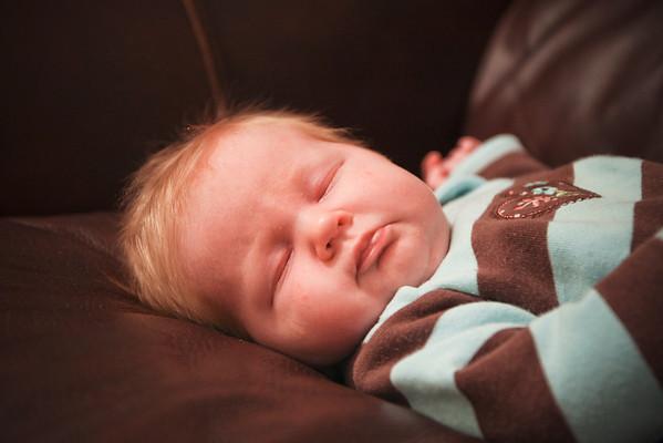 4-weeks Phoebe
