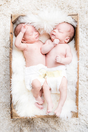 Twins-93