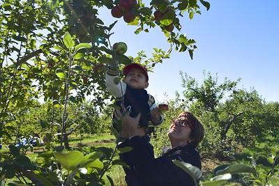 Pommes Robert Transport Rougemont 26 sept 2015