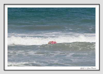2015-04-27 Floride plage