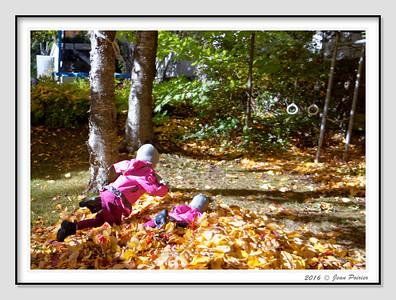 L'automne on jour dans les feuilles