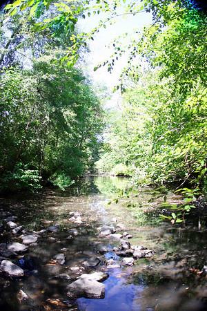 The creek was quiet nice.
