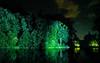 Longwood Gardens Nightscape 036