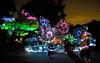 Longwood Gardens Nightscape 157