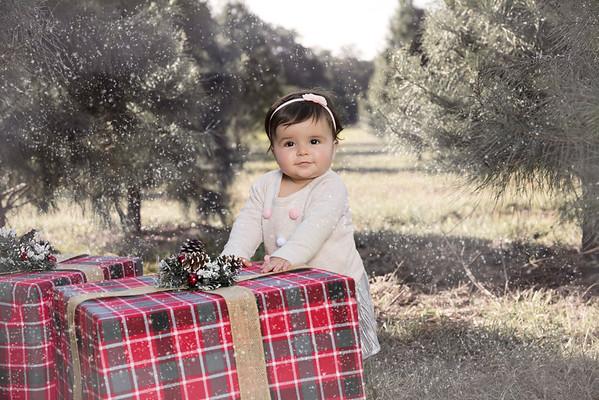 Alvarez Family Christmas