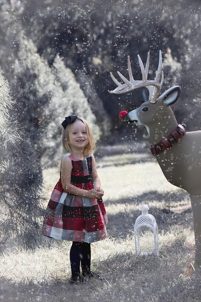 Garrison Family Christmas